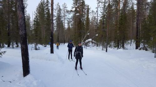 Sarah and Simon ccross country skiing through the trees, Akaslompolo